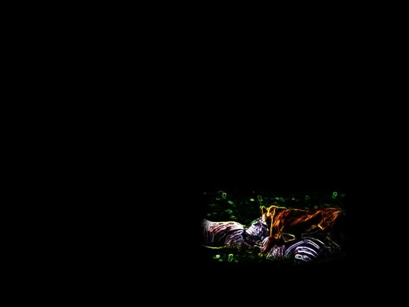 Screen Shot 2021-07-17 at 4.11.11 PM